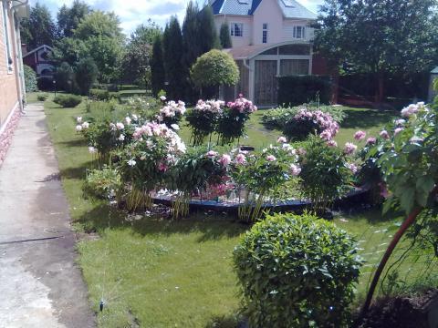 Автоматический полив цветочных насаждений и сада